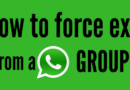 How To Force Exit From A WhatsApp Group And Not Be Added Again?