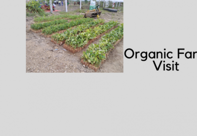 A visit to an Organic Farm ft. Indira AgroTech